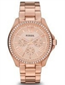 Picture of Fossil Cecile Multifunction Crystal Rose Gold-Tone AM4483 Women's Watch