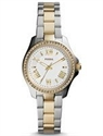 Picture of Fossil Cecile Crystal Two-Tone Stainless Steel AM4579 Women's Watch